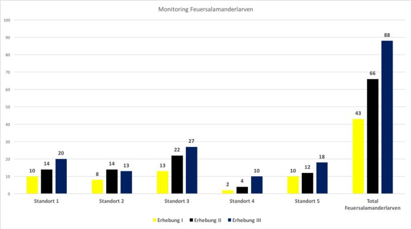 Ergebnisse Monitoring Erhebung I-III
